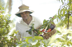 John maintains the organic vegetable garden supplying some of the ingredients for Sharini's breakfasts and dinners.